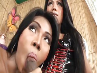 THE FILIPINO SHEMALE SEX TRADE 2 - Scene 6