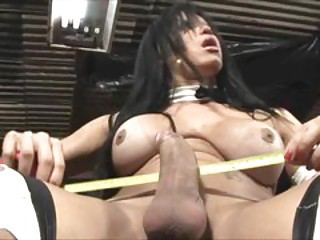 Horny ladyboy reaches an orgasm