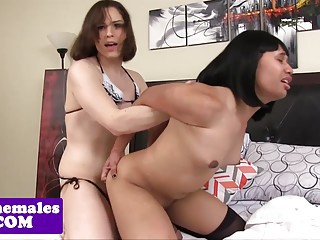 Asian tgirl assfucked doggystyle by shemale