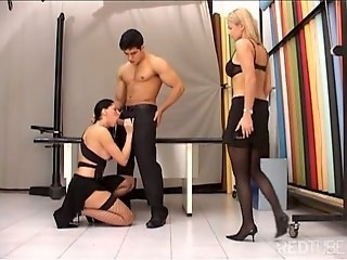Hard cock shemale is ready to put her ass to work