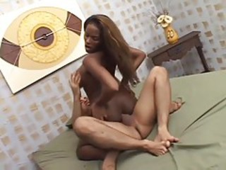 Interracial Bareback Chubby Black Trans